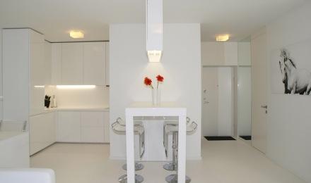 virtuvė ir įėjimas